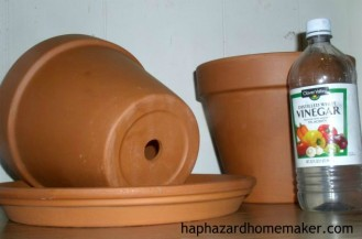 How to clean terra cotta clay pots.