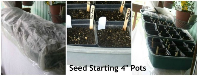 Update 2 Container Garden, Seed Starting - haphazardhomemaker.com