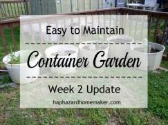 Update Week 2, Container Garden - haphazardhomemaker.com