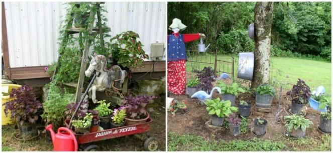 Week 11 Shade Garden