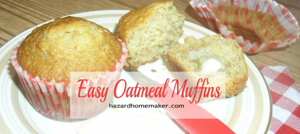 Oatmeal Muffins on a plate with red gingham napkin