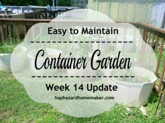 Container Garden Week 14 Cover