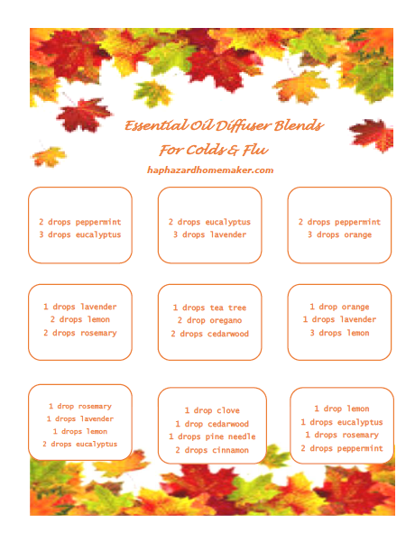 Fall Diffuser Blends - haphazardhomemaker.com