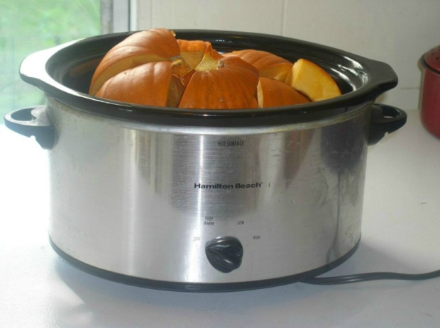 Cook Pumpkin in Slow Cooker - haphazardhomemaker.com