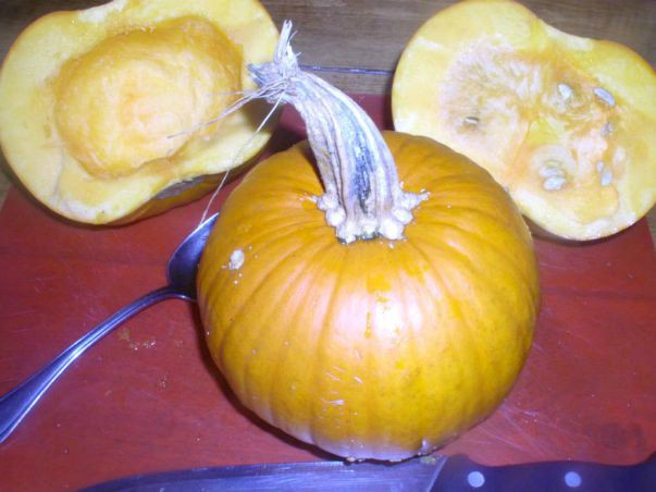 How to make pumpkin puree - haphazardhomemaker.com