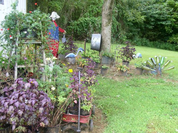 Container Garden Update #15 Shade Garden
