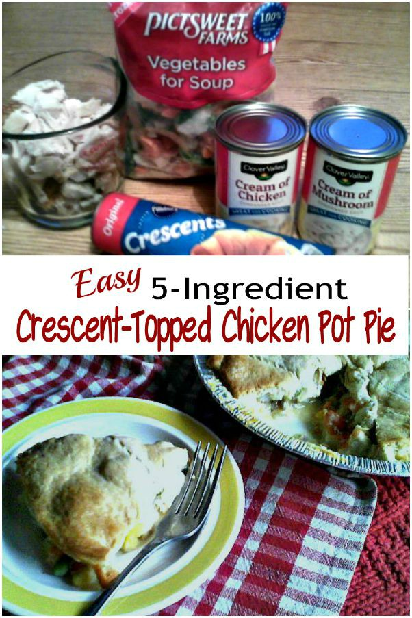Easy 5-Ingredient Crescent-Topped Chicken Pot Pie -haphazardhomemaker.com