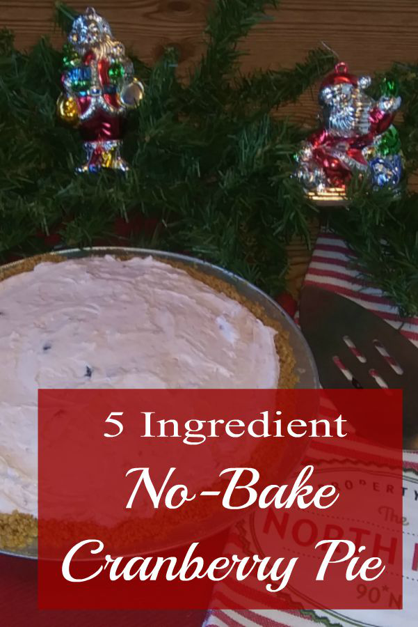 5 Ingredient No-Bake Cranberry Pie - haphazardhomemaker.com